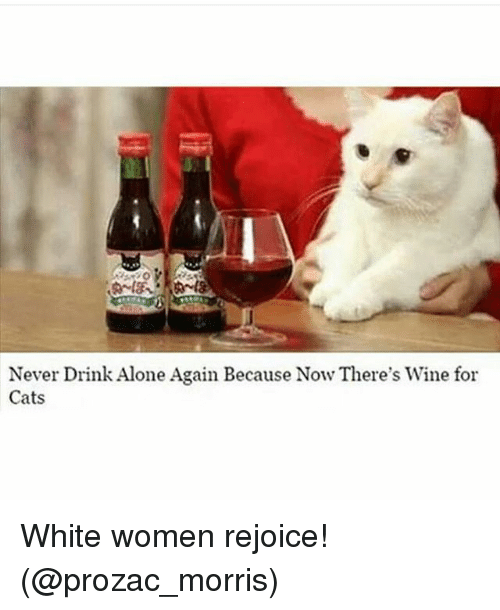 Funny Memes About Drinking Alone : Never drink alone again because now there s wine for cats