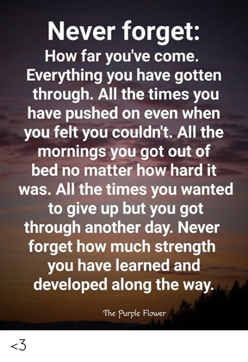 Mornings: Never forget:  How far you've come.  Everything you have gotten  through. All the times you  have pushed on even when  you felt you couldn't. All the  mornings you got out of  bed no matter how hard it  was. All the times you wanted  to give up but you got  through another day. Never  forget how much strength  you have learned and  developed along the way.  The Purple Flower <3