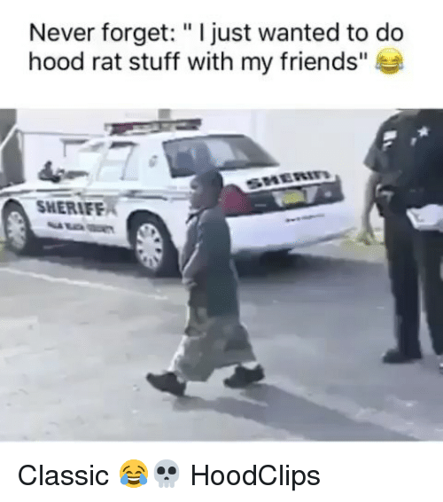 "Friends, Funny, and Stuff: Never forget: ""I just wanted to do  hood rat stuff with my friends""  SHERIFE Classic 😂💀 HoodClips"