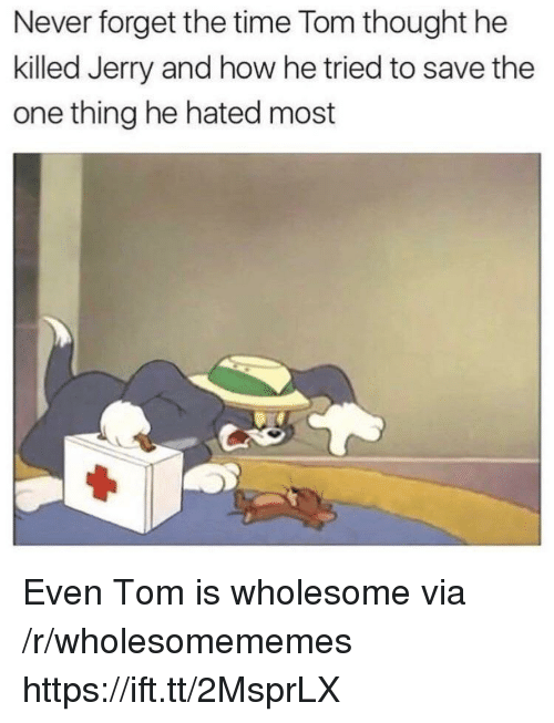 Time, Wholesome, and Never: Never forget the time Tom thought he  killed Jerry and how he tried to save the  one thing he hated most Even Tom is wholesome via /r/wholesomememes https://ift.tt/2MsprLX