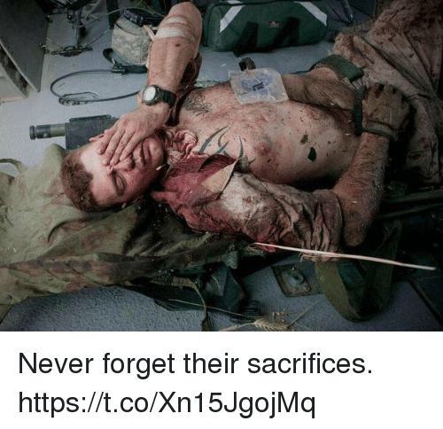 Memes, Never, and 🤖: Never forget their sacrifices. https://t.co/Xn15JgojMq
