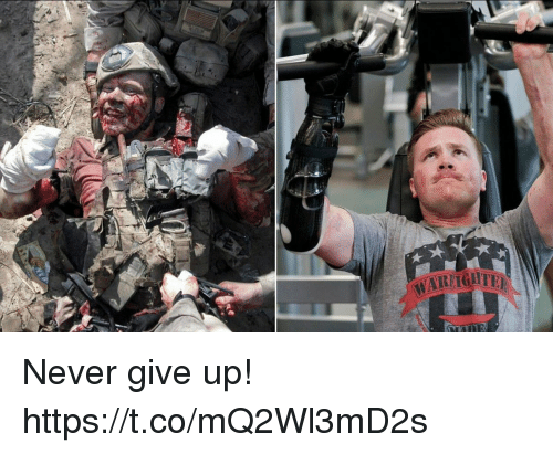 Memes, Never, and 🤖: Never give up! https://t.co/mQ2Wl3mD2s
