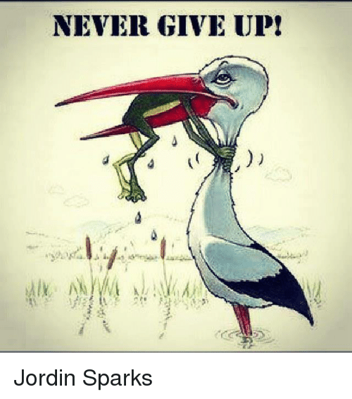 never give up education