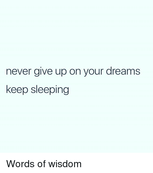 Keep Sleeping: never give up on your dreams  keep sleeping Words of wisdom
