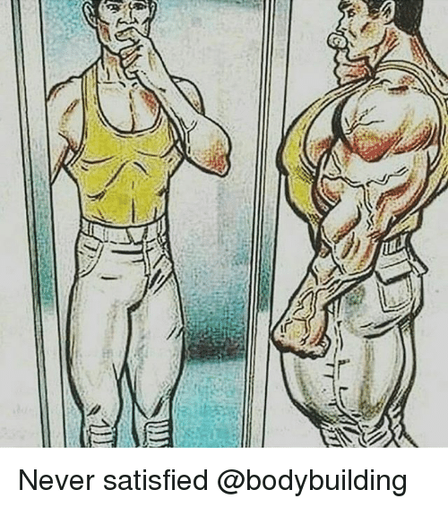 Memes, Bodybuilding, and Never: Never satisfied @bodybuilding