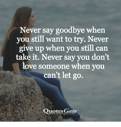 Never Say Goodbye When You Still Want To Try Never Give Up