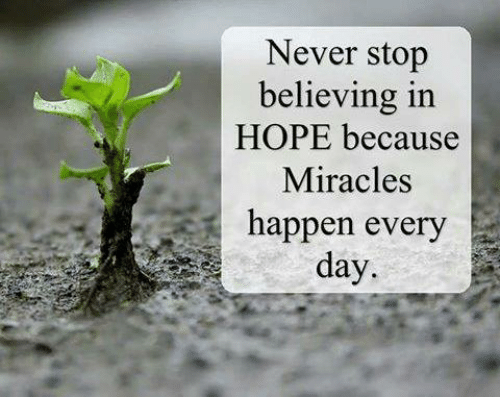 memes: Never stop  believing in  HOPE because  Miracles  happen every  day