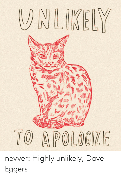 dave: nevver:  Highly unlikely, Dave Eggers