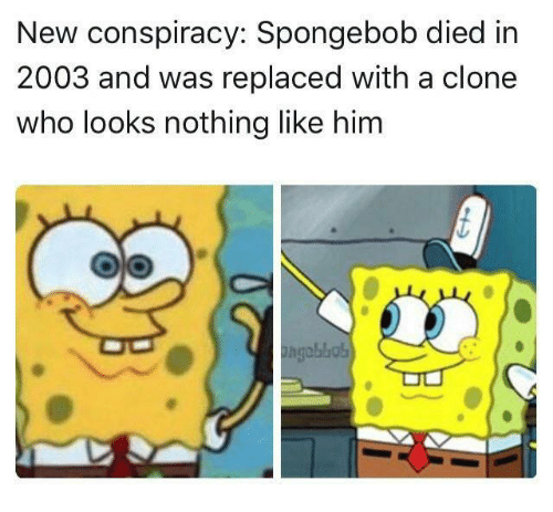SpongeBob, Conspiracy, and Who: New conspiracy: Spongebob died in  2003 and was replaced with a clone  who looks nothing like him
