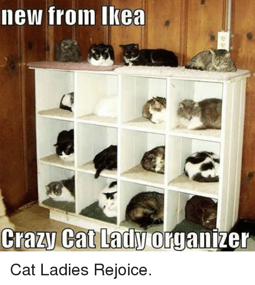 Crazy Cat Lady Organizer: new froin Ikea  Crazy Cat Lady organizer <p>Cat Ladies Rejoice.</p>