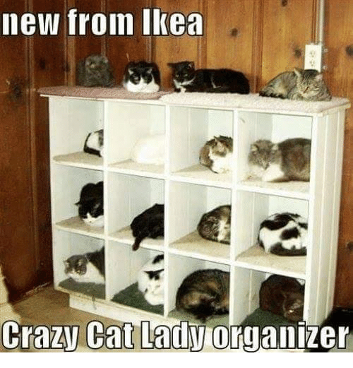 crazy cats: new from Ikea  Crazy Cat Lady org