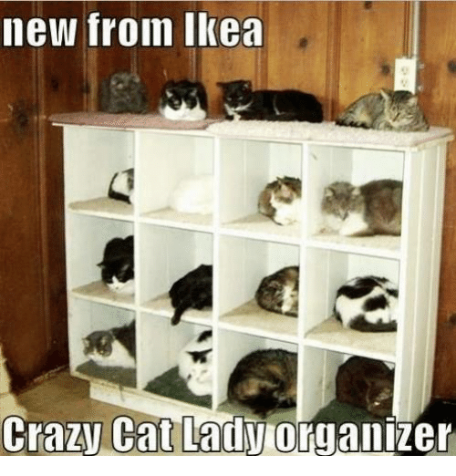 crazy cats: new from Ikea  Crazy Cat Lady  organizer
