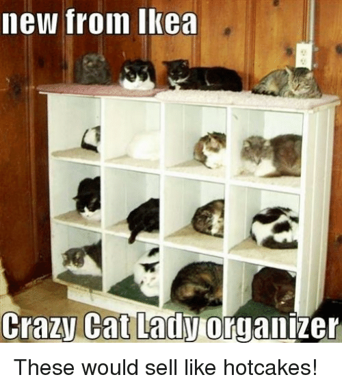 Crazy Cat Lady Organizer: new from Ikea  Crazy Cat Lady  organizer These would sell like hotcakes!