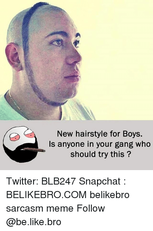 Be Like, Meme, and Memes: New hairstyle for Boys.  Is anyone in your gang who  should try this? Twitter: BLB247 Snapchat : BELIKEBRO.COM belikebro sarcasm meme Follow @be.like.bro