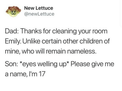 Cleaning Your Room: New Lettuce  anewLettuce  Dad: Thanks for cleaning your room  Emily. Unlike certain other children of  mine, who will remain nameless.  Son: *eyes welling up* Please give me  a name, l'm 17
