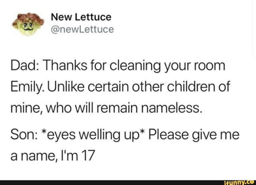 Cleaning Your Room: New Lettuce  @newLettuce  Dad: Thanks for cleaning your room  Emily. Unlike certain other children of  mine, who will remain nameless.  Son: *eyes welling up* Please give me  a name, I'm 17  ifunny.co