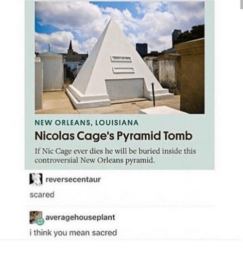 Nicola Cage: NEW ORLEANS, LOUISIANA  Nicolas Cage's Pyramid Tomb  If Nic Cage ever dies he will be buried inside this  controversial New Orleans pyramid.  reverse centaur  Scared  average houseplant  i think you mean sacred