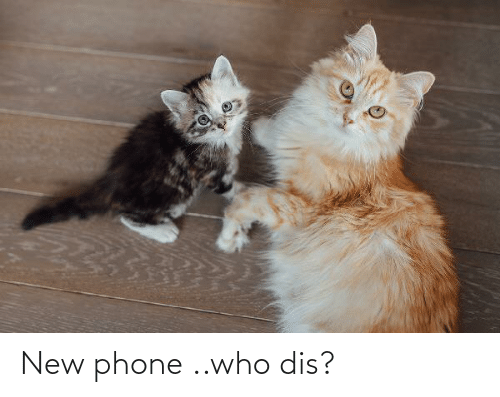 Who dis: New phone ..who dis?