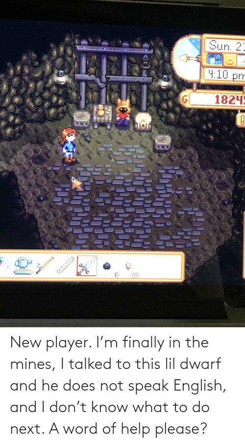 What To Do: New player. I'm finally in the mines, I talked to this lil dwarf and he does not speak English, and I don't know what to do next. A word of help please?