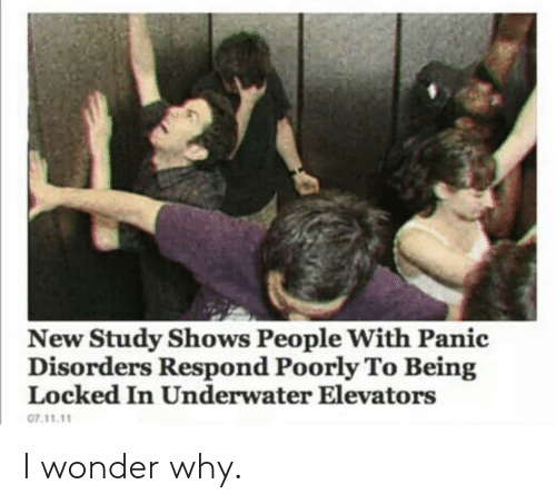 locked in: New Study Shows People With Panic  Disorders Respond Poorly To Being  Locked In Underwater Elevators  07.11.11 I wonder why.
