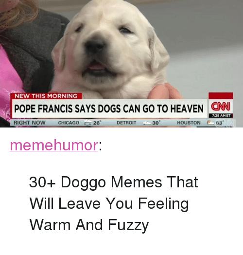 """Doggo Memes: NEW THIS MORNING  POPE FRANCIS SAYS DOGS CAN GO TO HEAVEN CN  7:28 AMET  RIGHT NOW  CHICAGO  26°  DETROIT 30  HOUSTON 63 <p><a href=""""http://memehumor.net/post/166397764385/30-doggo-memes-that-will-leave-you-feeling-warm"""" class=""""tumblr_blog"""">memehumor</a>:</p>  <blockquote><p>30+ Doggo Memes That Will Leave You Feeling Warm And Fuzzy</p></blockquote>"""