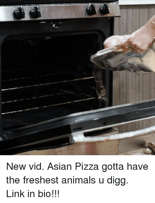 Animals, Asian, and Pizza: New vid. Asian Pizza gotta have the freshest animals u digg. Link in bio!!!