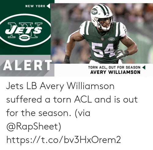 acl: NEW YORK  HHH  54  ALERT  TORN ACL, OUT FOR SEASON  AVERY WILLIAMSON Jets LB Avery Williamson suffered a torn ACL and is out for the season. (via @RapSheet) https://t.co/bv3HxOrem2