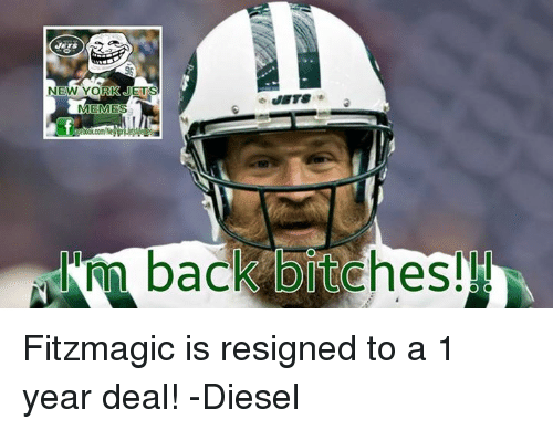 new-york-jets-memes-back-bitches-fitzmag