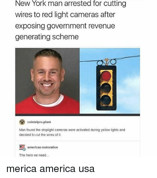 America, Memes, and New York: New York man arrested for cutting  wires to red light cameras after  exposing government revenue  generating scheme  とレ  cointelpro.plant  Man found the stoplight cameras were activated during yellow lights and  decided to cut the wires of it  americas-restoration  The hero we need.. merica america usa