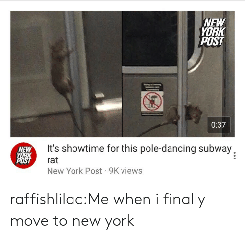 pole dancing: NEW  YORK  POST  0:37  NEW  YORK  POST  It's showtime for this pole-dancing subway,  rat  New York Post 9K views raffishlilac:Me when i finally move to new york