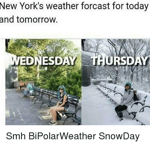 Denver Weather Tomorrow: 25+ Best Memes About New York Weather