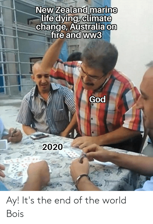 Its The End Of The World: New Zealand marine  life dying, climate  change, Australia on  fire and ww3  God  2020 Ay! It's the end of the world Bois