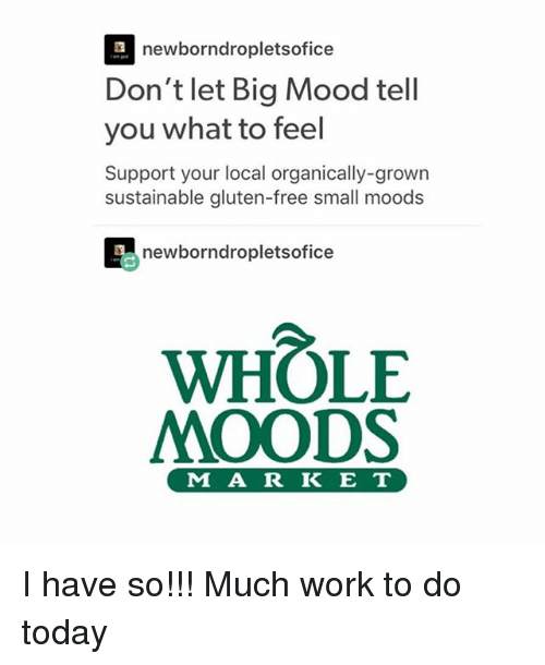 Mood, Tumblr, and Work: newborndropletsofice  Don't let Big Mood tell  you what to feel  Support your local organically-grown  sustainable gluten-free small moods  newborndropletsofi  ce  WHOLE  MOODS  M A R K E T I have so!!! Much work to do today