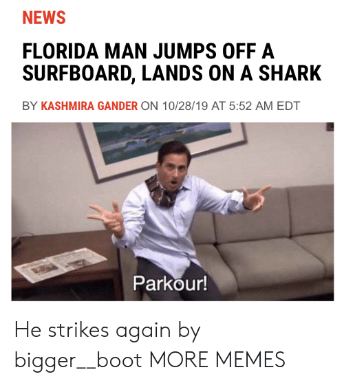 Florida Man: NEWS  FLORIDA MAN JUMPS OFF A  SURFBOARD, LANDS ON A SHARK  BY KASHMIRA GANDER ON 10/28/19 AT 5:52 AM EDT  Parkour! He strikes again by bigger__boot MORE MEMES
