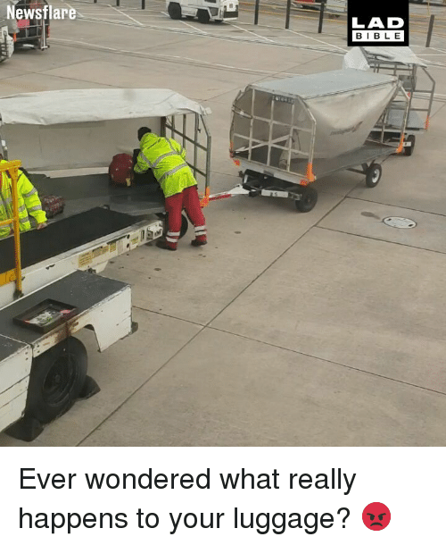 Memes, Luggage, and 🤖: Newsflare  LAD  BIB L E Ever wondered what really happens to your luggage? 😡