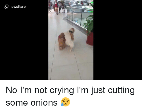 how to not cry when cutting onions