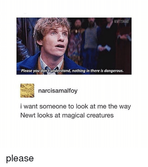 Memes, 🤖, and Newt: NEWTTSWANO  Please you don't understand, nothing in there is dangerous.  narcisamalfoy  i want someone to look at me the way  Newt looks at magical creatures please