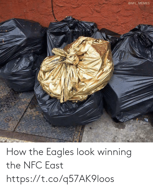 nfc: @NFL_MEMES How the Eagles look winning the NFC East https://t.co/q57AK9loos