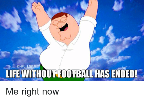 Meme Life: @NFL MEMES  LIFE WITHOUT FOOTBALL HAS ENDED! Me right now