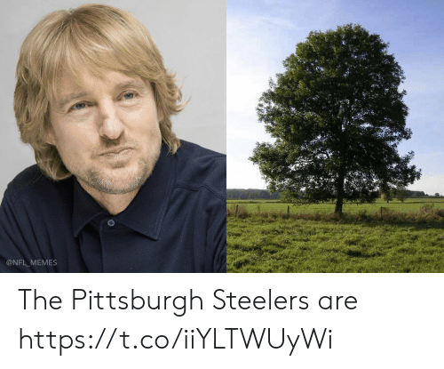 Pittsburgh Steelers: @NFL MEMES The Pittsburgh Steelers are https://t.co/iiYLTWUyWi