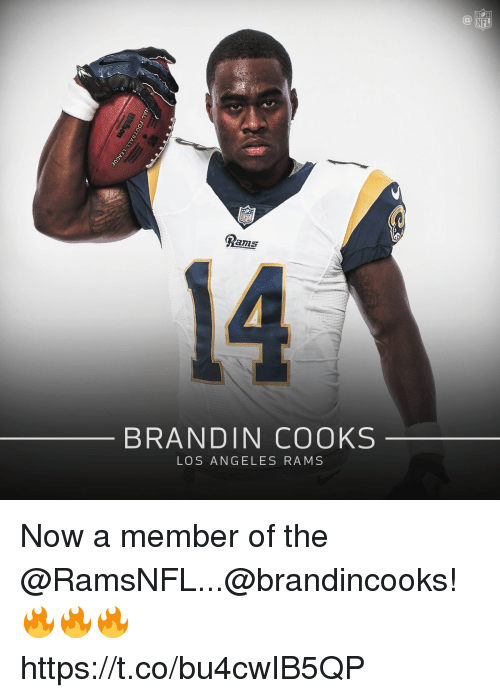 Los Angeles Rams, Memes, and Nfl: NFL  NFL  Rams  14  BRANDIN COOKS  LOS ANGELES RAMS Now a member of the @RamsNFL...@brandincooks! 🔥🔥🔥 https://t.co/bu4cwIB5QP