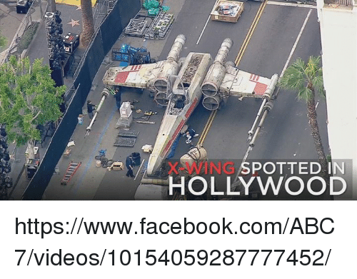 pot: NG POTTED IN  HOLLYWOOD https://www.facebook.com/ABC7/videos/10154059287777452/