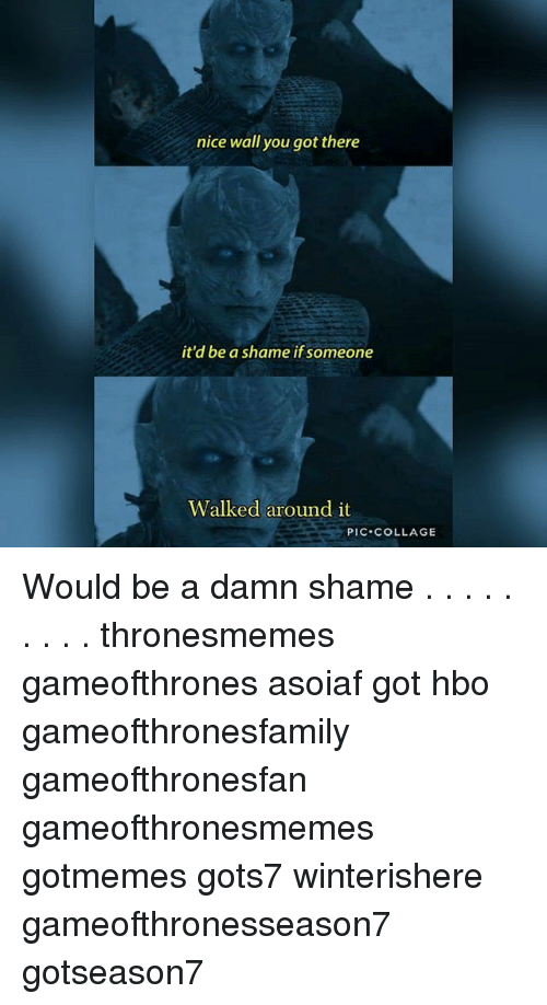 Damn Shame: nice wall you got there  it'd be a shame if someone  Walked around it  PIC COLLAGE Would be a damn shame . . . . . . . . . thronesmemes gameofthrones asoiaf got hbo gameofthronesfamily gameofthronesfan gameofthronesmemes gotmemes gots7 winterishere gameofthronesseason7 gotseason7