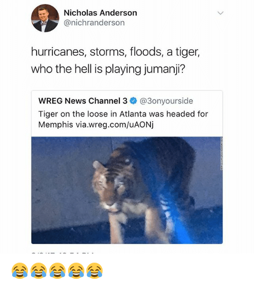 Memes, News, and Tiger: Nicholas Anderson  @nichranderson  hurricanes, storms, floods, a tiger,  who the hell is playing jumanji?  wREG News Channel 3ネ@3onyourside  Tiger on the loose in Atlanta was headed for  Memphis via.wreg.com/uAONj 😂😂😂😂😂