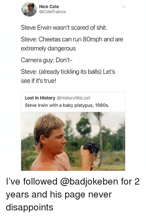 Run, Shit, and Steve Irwin: Nick Cole  @ColeTrainss  Steve Erwin wasn't scared of shit.  Steve: Cheetas can run 80mph and are  extremely dangerous  Camera guy: Don't-  Steve: (already tickling its balls) Let's  see if it's true!  Lost In History @HistoryWeLost  Steve Irwin with a baby platypus, 1980s. I've followed @badjokeben for 2 years and his page never disappoints