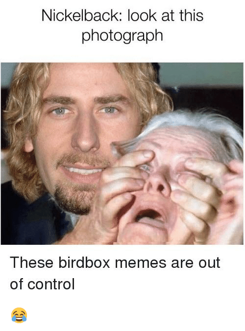 Nickelback Look at This Photograph: Nickelback: look at this  photograph  These birdbox memes are out  of control