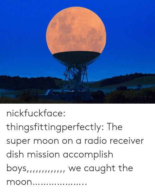 receiver: nickfuckface:  thingsfittingperfectly:  The super moon on a radio receiver dish  mission accomplish boys,,,,,,,,,,,,, we caught the moon………………..