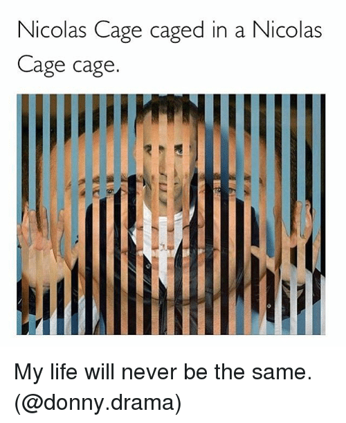 Nicola Cage: Nicolas Cage caged in a Nicolas  Cage cage  /FVM  Fill  VIC My life will never be the same. (@donny.drama)