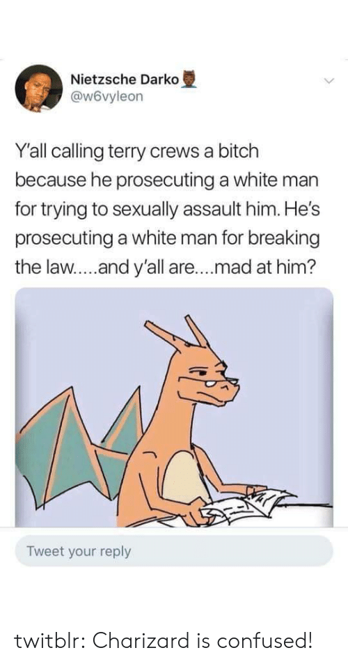 charizard: Nietzsche Darko  @w6vyleon  Y'all calling terry crews a bitch  because he prosecuting a white man  for trying to sexually assault him. He's  prosecuting a white man for breaking  the law....and y'all are.. .mad at him?  Tweet your reply twitblr:  Charizard is confused!