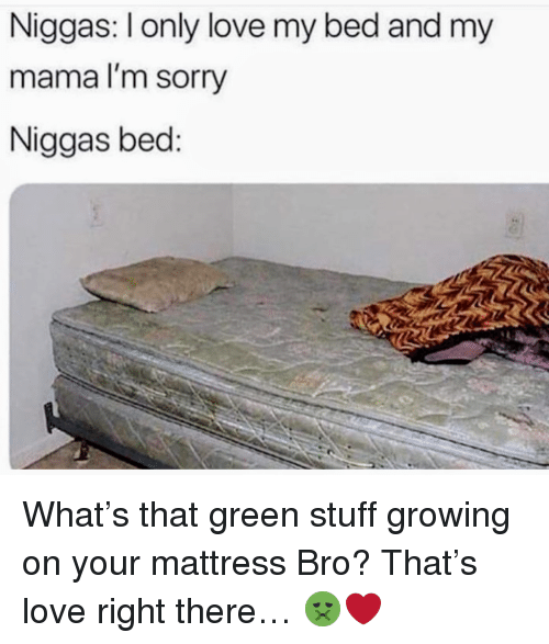 Love, Sorry, and Mattress: Niggas: I only love my bed and my  mama l'm sorry  Niggas bed: <p>What's that green stuff growing on your mattress Bro? That's love right there… 🤢❤️</p>